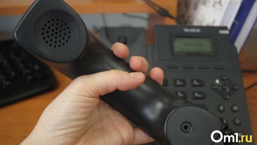 Омичи оборвали телефоны Минобра с вопросами о «дистанционке»