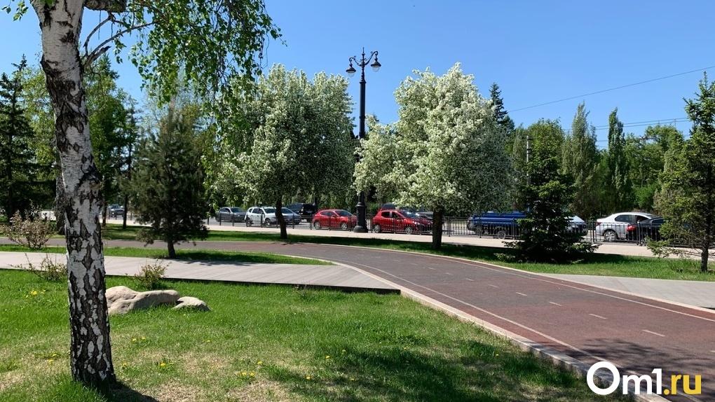 Названа новая дата продления режима самоизоляции в Омске