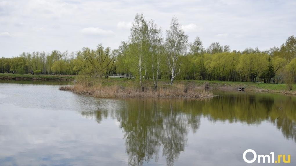 Десятки утопленников, включая детей. В Омске продолжается череда шокирующих смертей на водоёмах