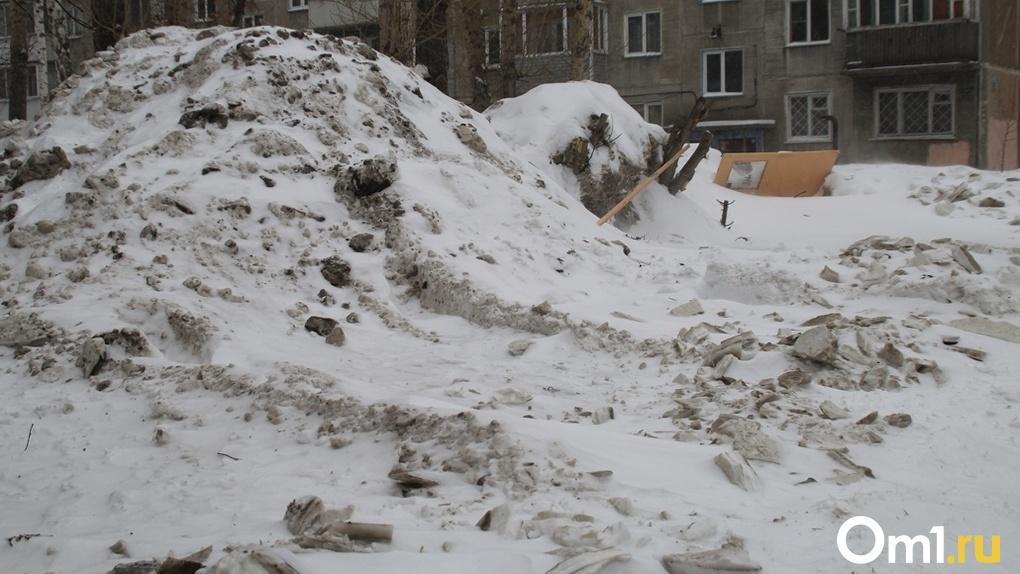 Новосибирские власти отказались строить снегоплавильные станции