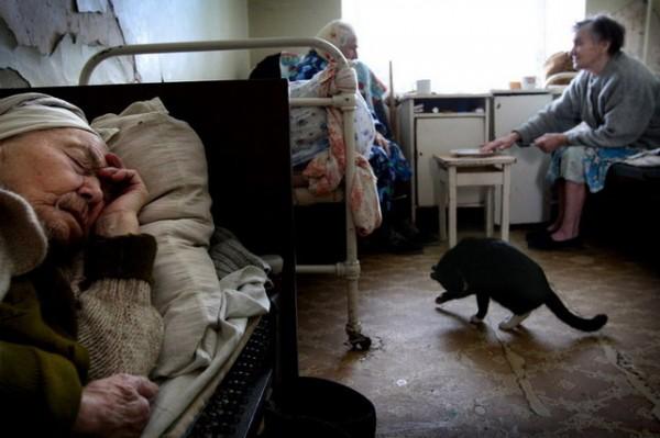 Домах престарелых в москве документ для зачисления в дом для престарелых омск