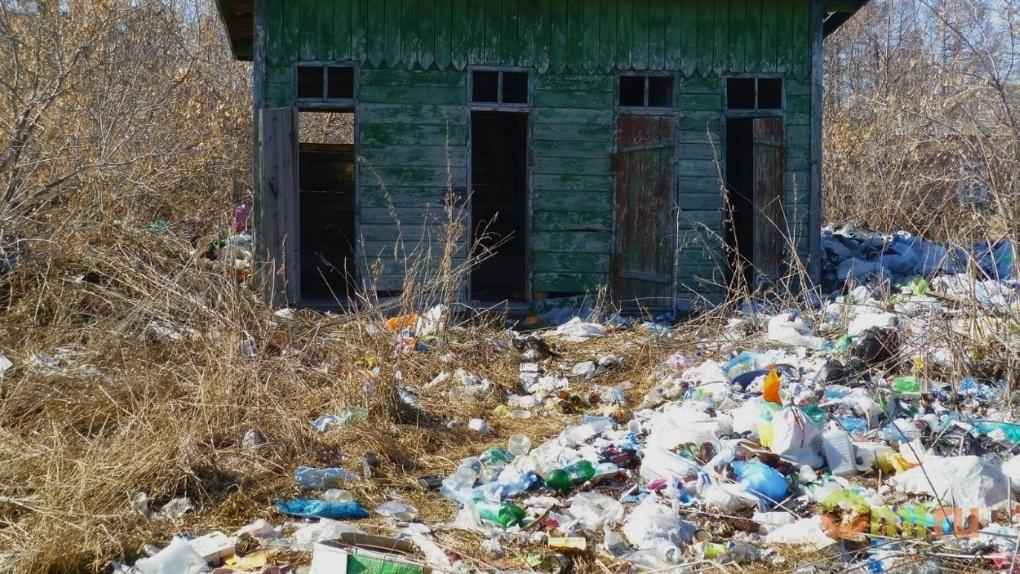 Общественники насчитали в Омской области 83 стихийные свалки