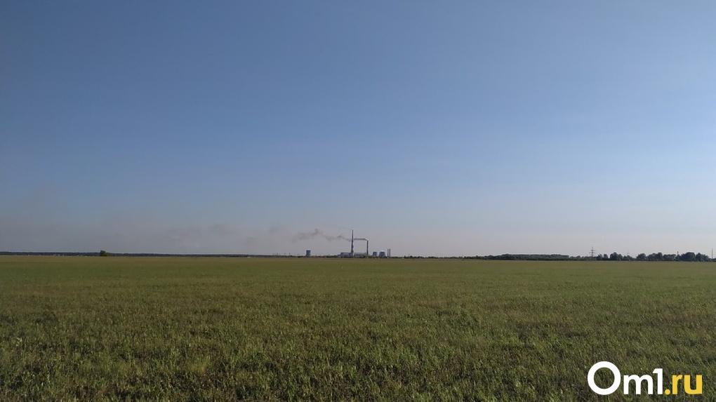 В Омске нашли ещё два предприятия, которые загрязняли воздух опасными веществами