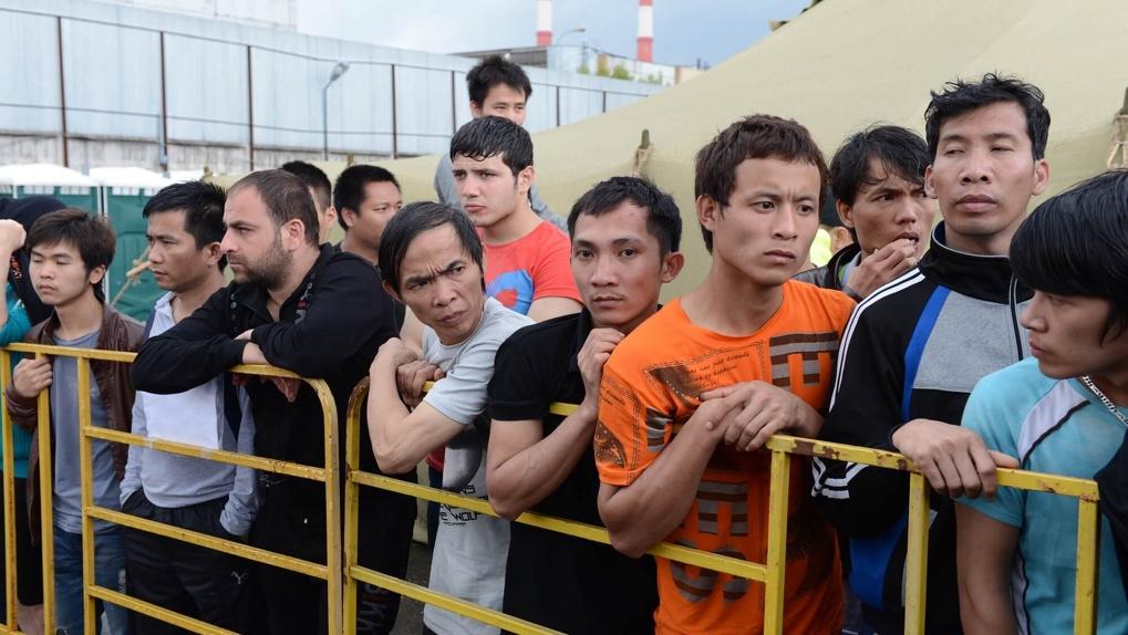 Омская юридическая академия будет оказывать правовую помощь мигрантам