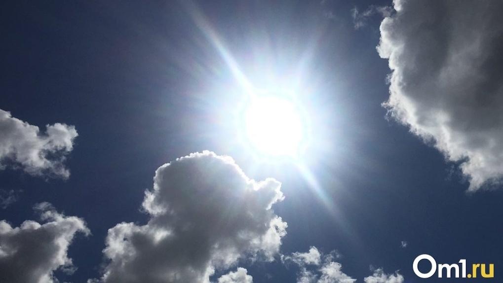 Потепление до + 17: погода на новую неделю порадует новосибирцев