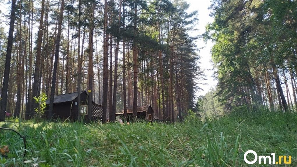 Пропавшую в тайге омскую пенсионерку ищут с сопровождением охотников. В этих местах водятся медведи