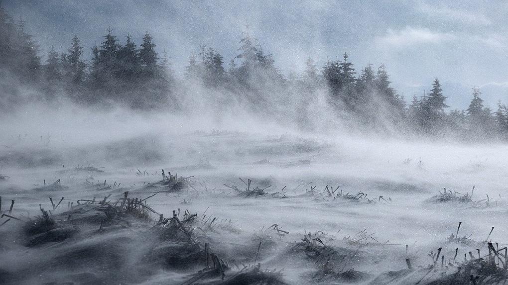 Власти Новосибирска ввели режим ЧС из-за надвигающейся бури