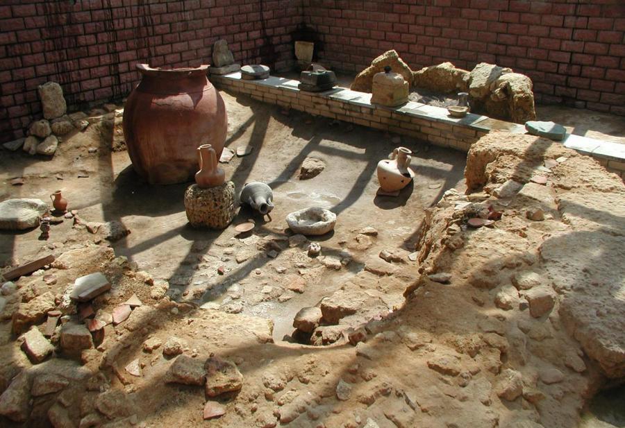 Научная сенсация: в Омске нашли скелет древнего человека