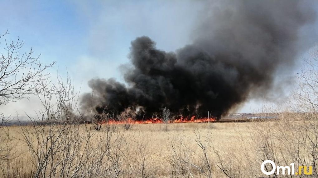 Призрачные деревни. Девять страшных пожаров в Омской области в мае