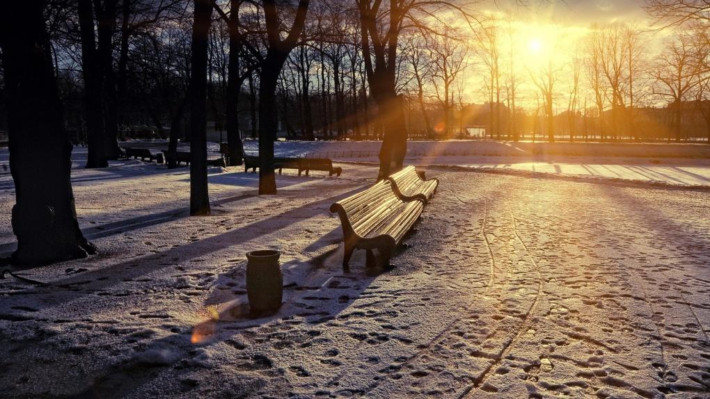Резкое потепление идет в Новосибирск