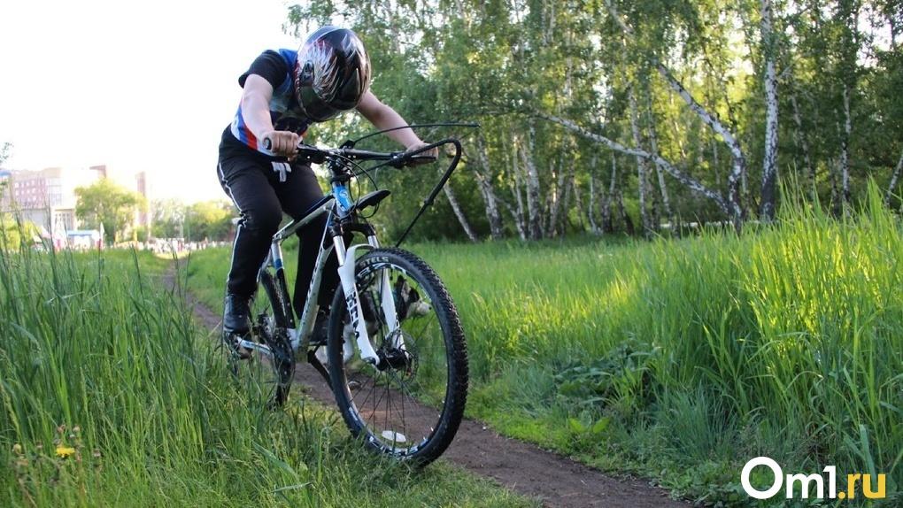 В Омске по всему городу проложат 260 км велодорожек