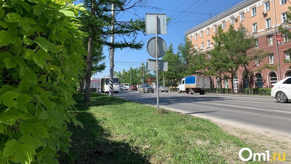 В Омске ГИБДД выйдет на рейд по проверке водителей на правила перевозки детей