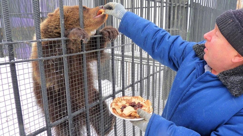 Медведица Соня и обезьянки отметили Масленицу блинами