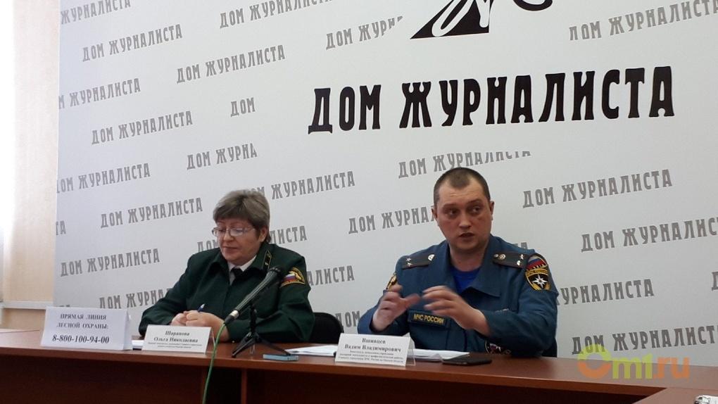 В Омской области готовятся тушить лесные пожары
