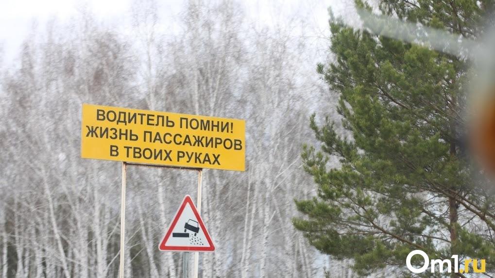 Выпил и сбил мальчика насмерть. В Омской области за сутки на дорогах погибли ребёнок и два подростка