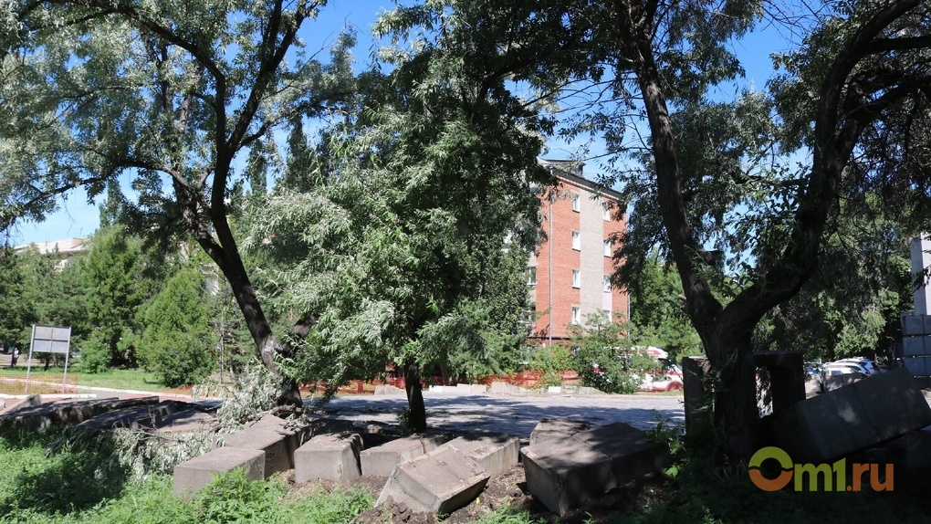 Омичи решили судьбу деревьев на бульваре Победы
