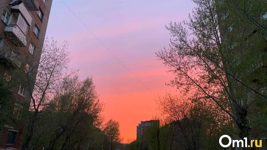 Июль в Омске начнется со сказочной жары