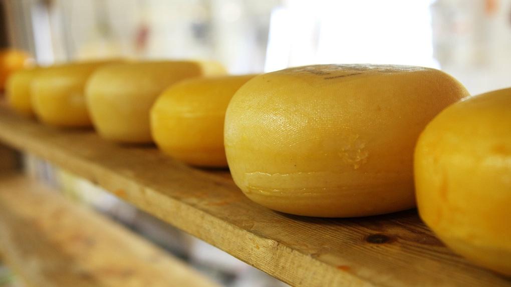 В Омске уничтожили 21 килограмм сыра из Европы