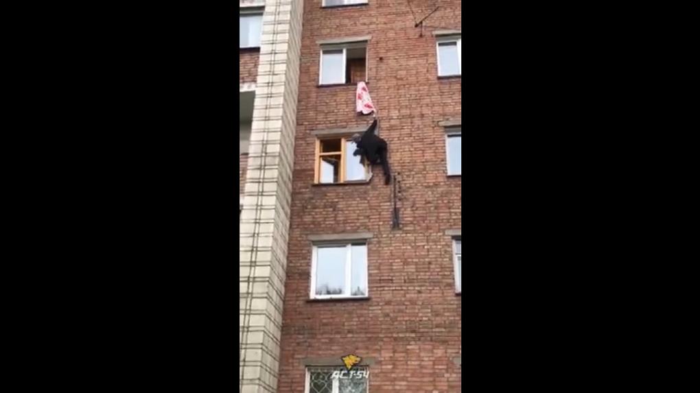 Новосибирцев насмешил мужчина, который пытался спуститься с четвёртого этажа по простыне