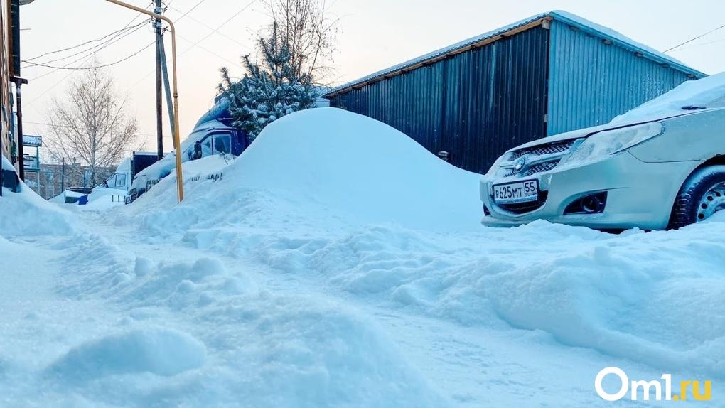 Климатолог рассказал, когда в Омске полностью исчезнет зима
