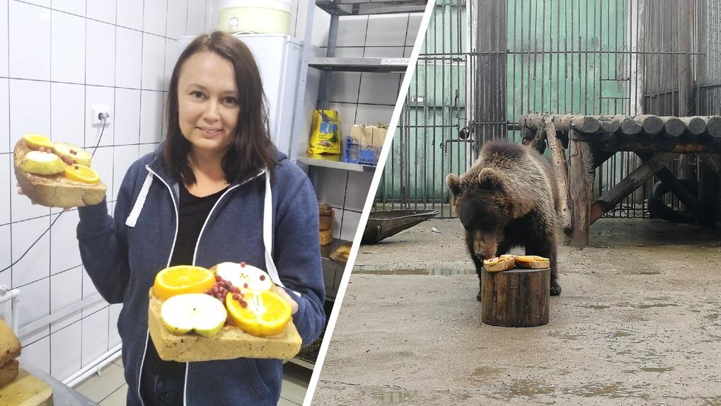 Торт для медведей и окна для тигров: как меняется Большереченский зоопарк