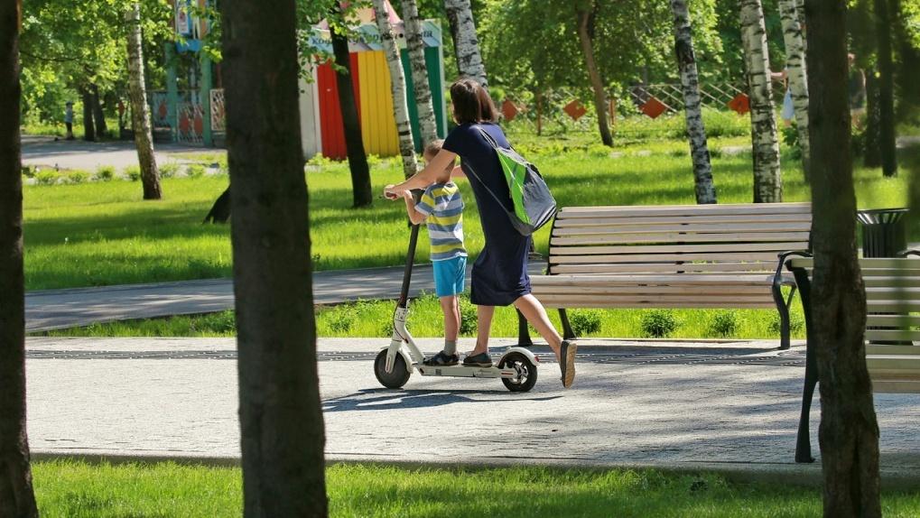 241 зеленую зону Новосибирска защитили от застройки