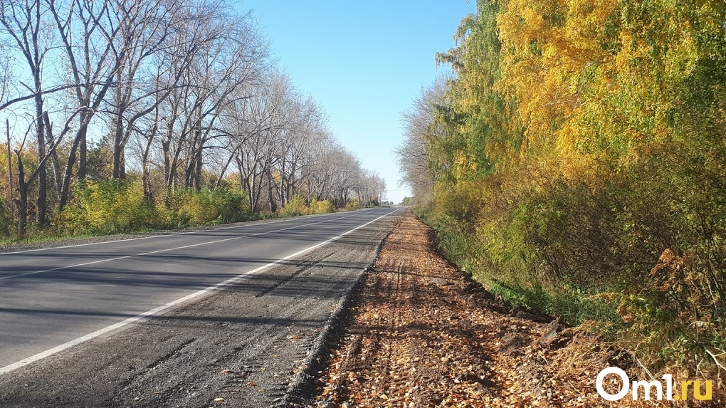В Омске на ремонт и содержание дорог направят почти 5 миллиардов