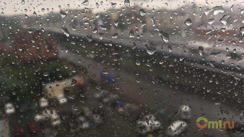 Первые летние выходные в Омской области будут дождливыми