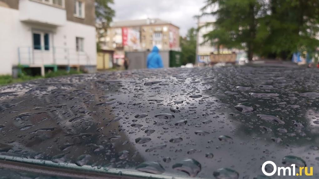 Омскую область ждут рекордные осадки в конце июня