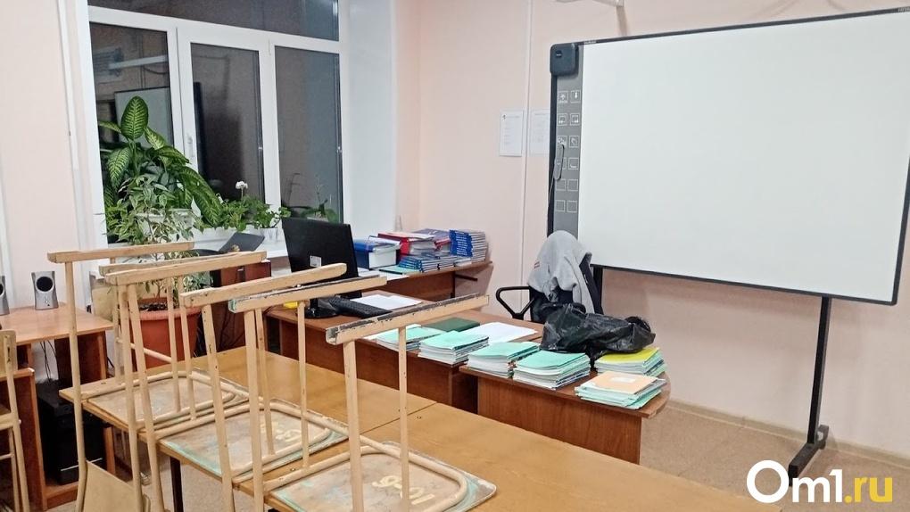 Омскую учительницу, которая поддержала детей на забастовке в школе, отправят на дополнительные курсы