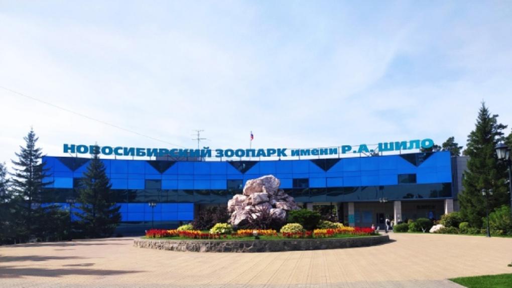 Платную парковку у Новосибирского зоопарка признали незаконной