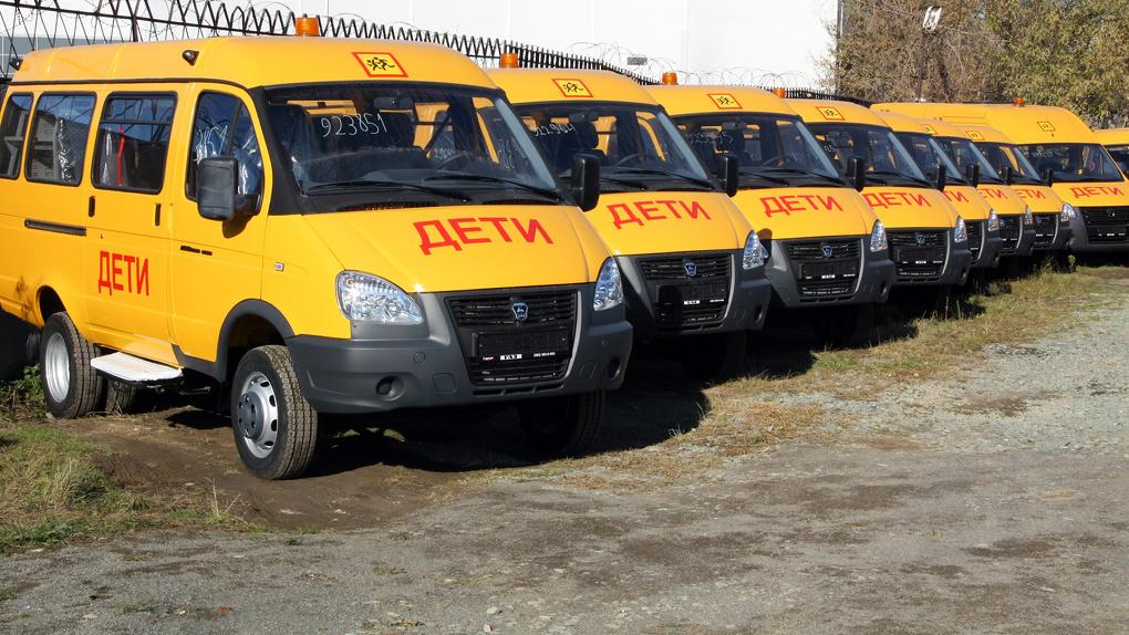 Более 60 школьных автобусов появится в Новосибирской области до конца 2021 года