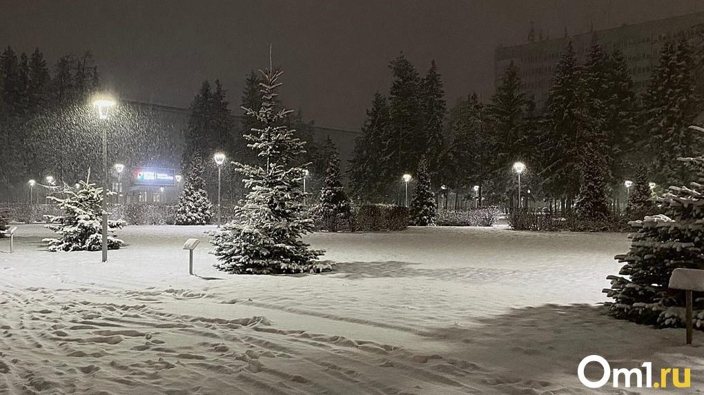 Снежные хлопья засыпят Новосибирск на уик-энд