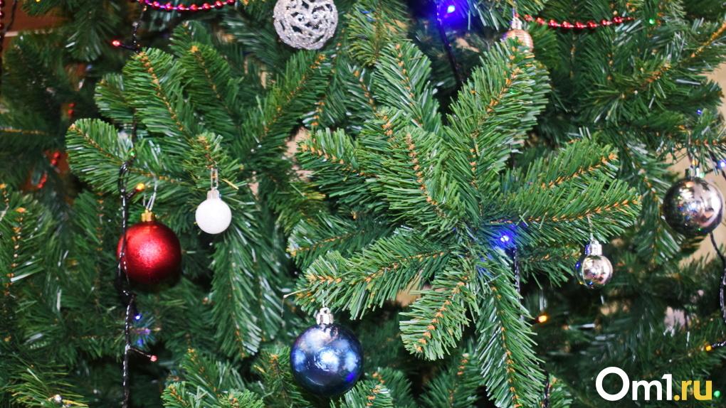 Названа стоимость новогодней ёлки в омских лесхозах. Она гораздо ниже, чем можно найти на базаре