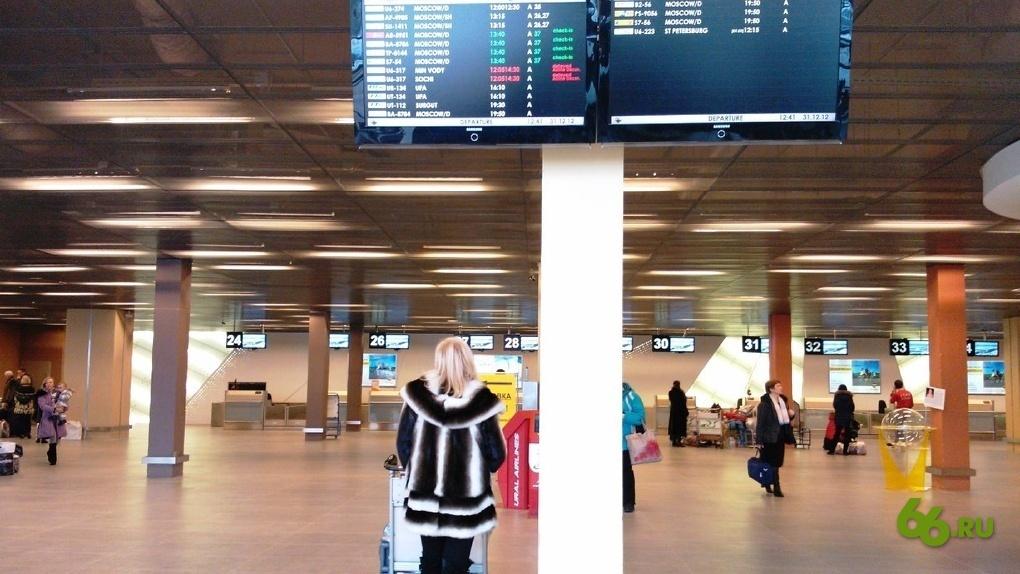 В ноябре вступают в силу новые правила провоза багажа: о чем нужно помнить перед отпуском