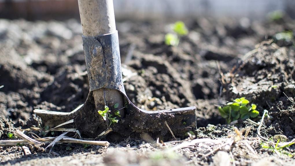 В Омской области запретили копать могилы пока действует режим самоизоляции