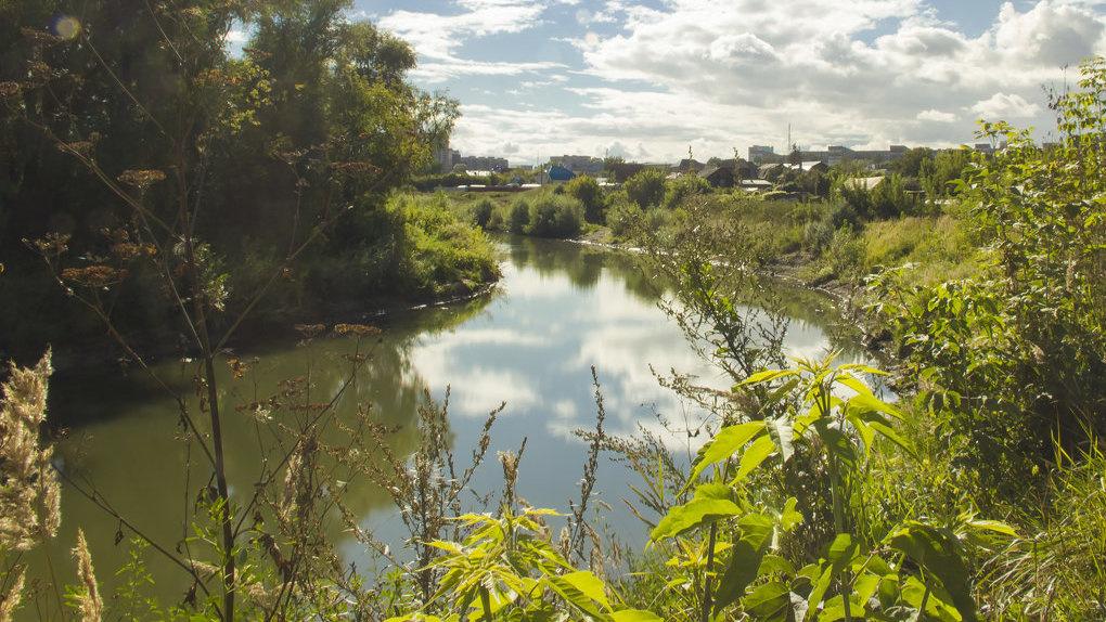 «Чёрным» ассенизаторам перекрыли доступ для слива нечистот в новосибирскую реку Тулу