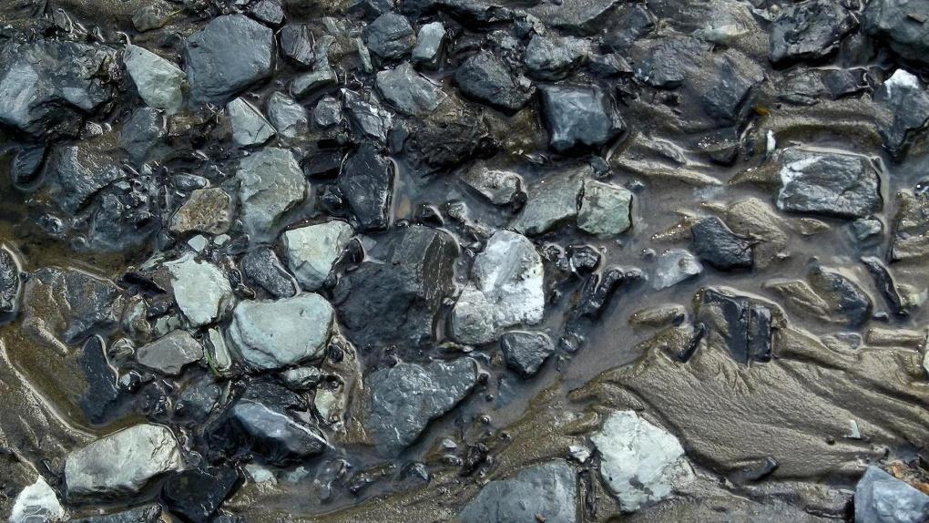 Грязевой сель сошёл в Новосибирской области