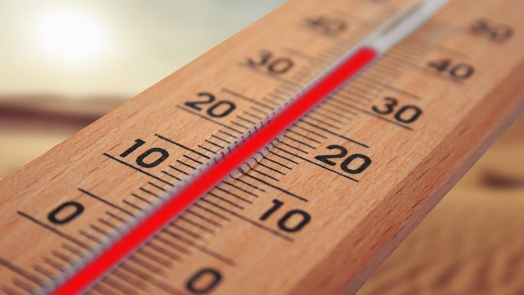 «Бабье лето» заглянет в Новосибирск на выходных: синоптики прогнозируют потепление до +14