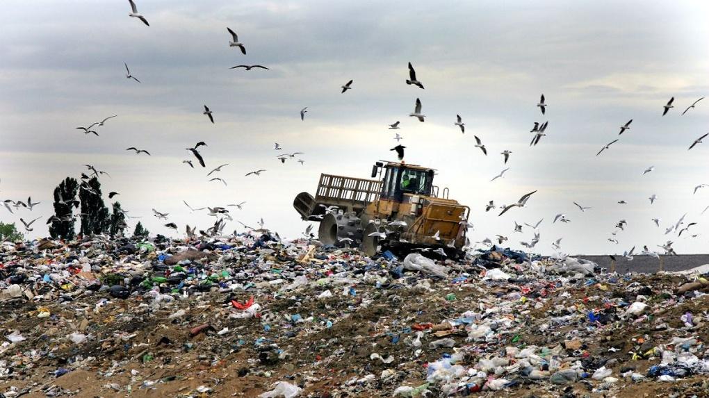 В Омске появится мусоросжигательный завод. Экологи бьют тревогу