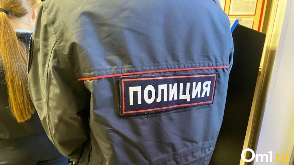 Молодой омич заплатил 15 тысяч рублей за оскорбление полицейского