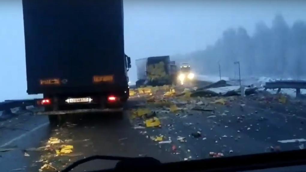 Смертельное месиво: из-за гололеда и тумана под Омском разбилось несколько машин. Есть погибшие (видео)