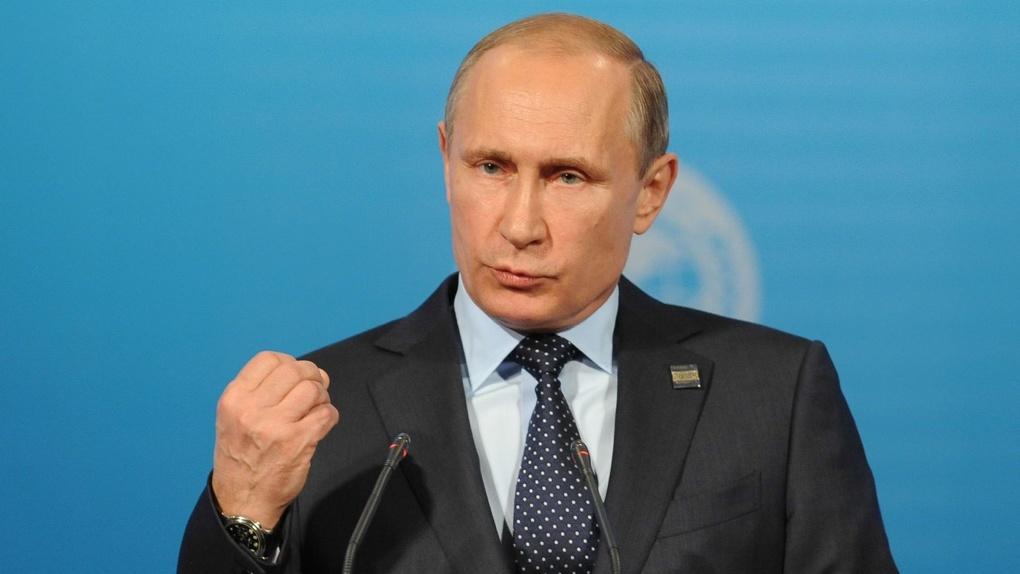 Путин будет лично следить за делом о массовых вырубках в Омской области