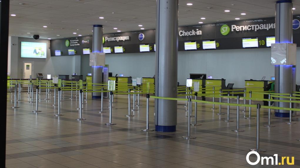 Новосибирский аэропорт Толмачёво обновят за 13,7 миллиарда рублей