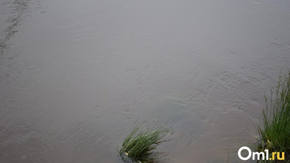 «Это тоже экологическая катастрофа». Омичи сравнили ситуацию на Камчатке с пятнами на Иртыше