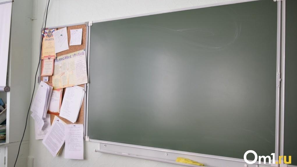 Омич пытался через Конституционный суд добиться, чтобы его дочь перевели в десятый класс