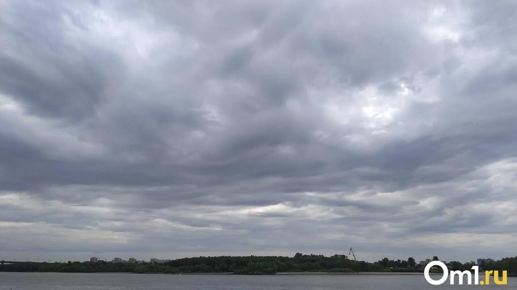 За полёт над Тарой омич заплатит 30 тысяч рублей