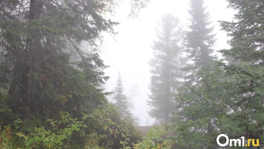 На Омск надвигаются туманы, 30-градусная жара и грозы