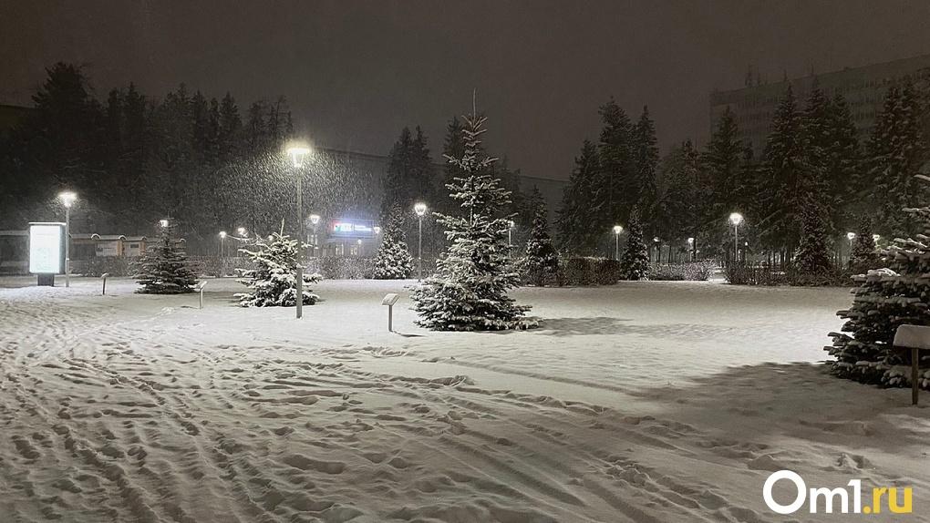 Мороз до -45 градусов и мощный снегопад: новосибирцев ждёт аномальная погода на новогодние праздники