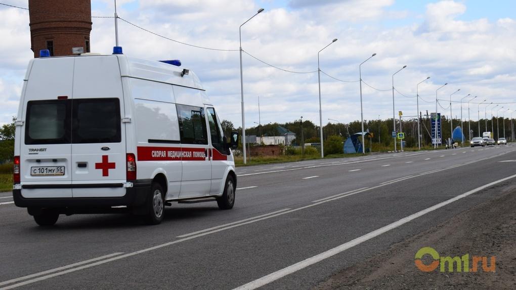 В Омской области пьяный водитель сбил двух детей